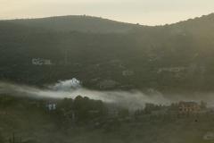 Light-Fog